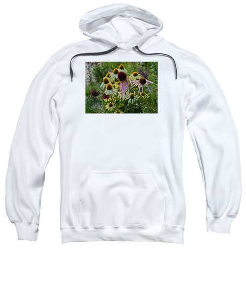 2015 Summer At The Garden Coneflowers Sweatshirt