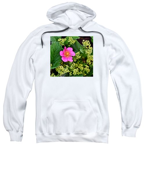 2015 Summer's Eve At The Garden Lipstick Strawberry Sweatshirt