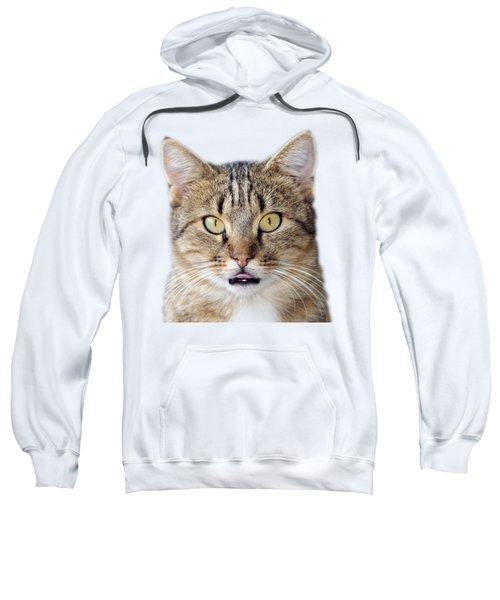 Cat Portrait Sweatshirt