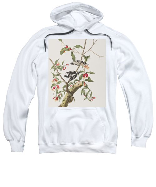 Downy Woodpecker Sweatshirt by John James Audubon
