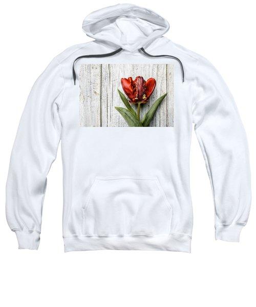 Tulip Sweatshirt