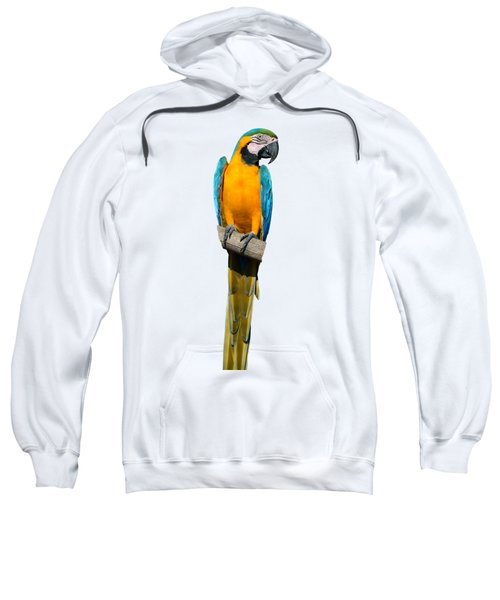 Blue And Gold Macaw Sweatshirt by George Atsametakis