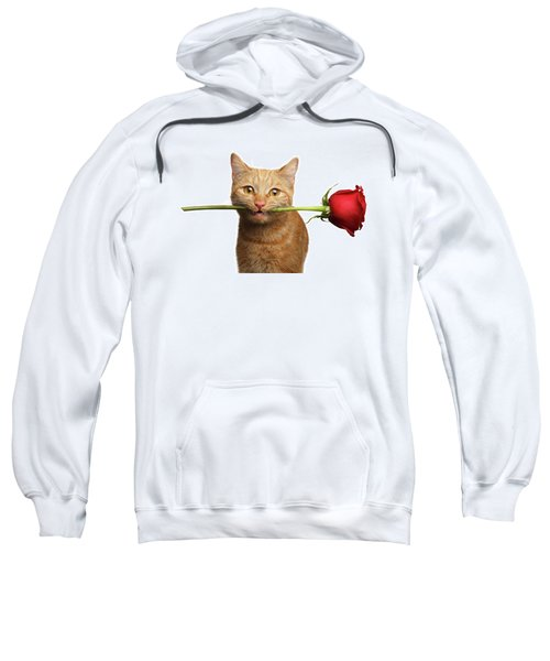 Portrait Of Ginger Cat Brought Rose As A Gift Sweatshirt