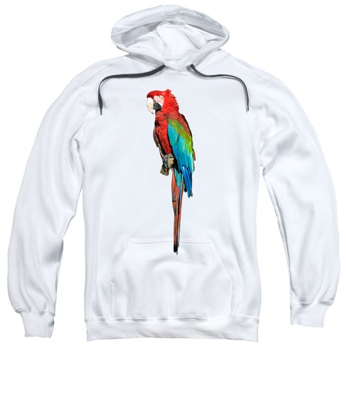 Red And Green Macaw Sweatshirt by George Atsametakis
