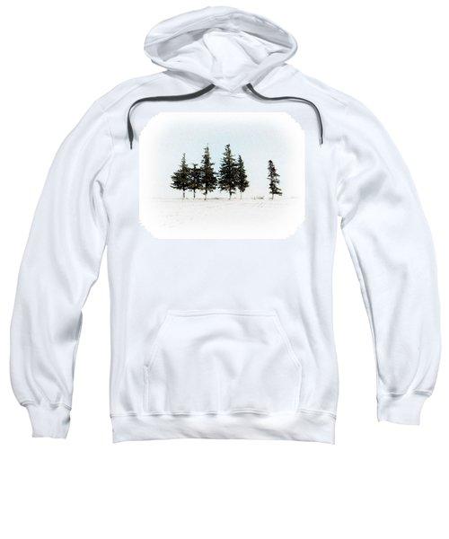 6 Trees Sweatshirt