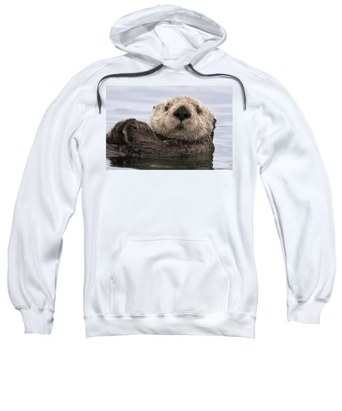 Sea Otter Elkhorn Slough Monterey Bay Sweatshirt by Sebastian Kennerknecht