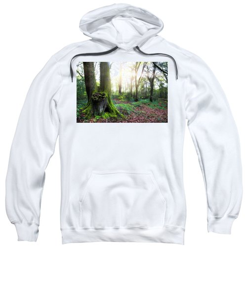New Forest - England Sweatshirt