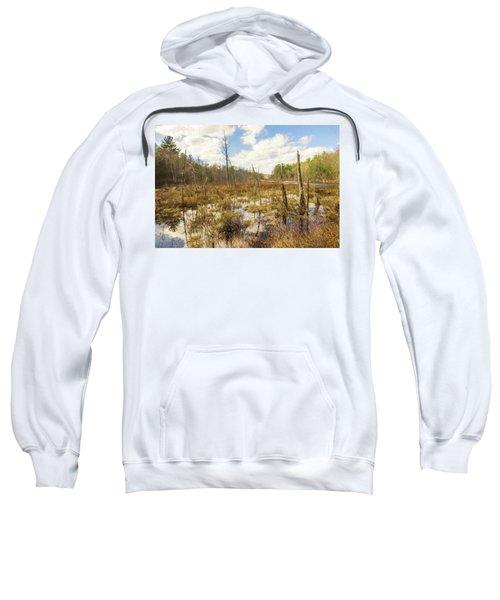 A Connecticut Marsh Sweatshirt