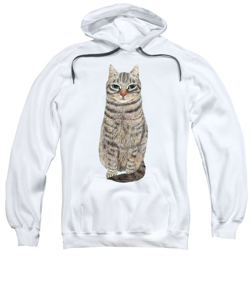 A Cool Tabby Sweatshirt