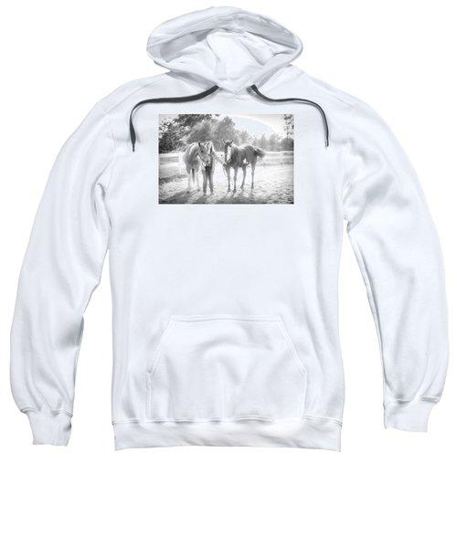 A Girl With Horses Sweatshirt