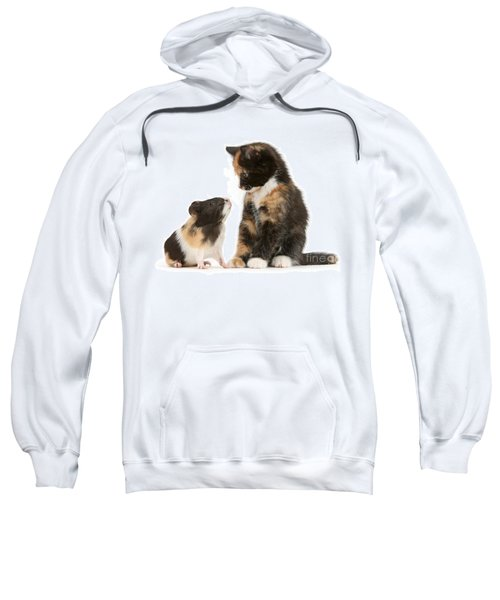 A Guinea For Your Thoughts Sweatshirt
