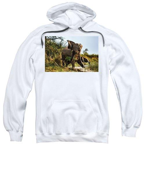 A Protective Mama Elephant With Calf  Sweatshirt