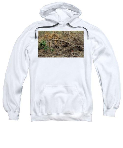 A Quiet Approach Sweatshirt
