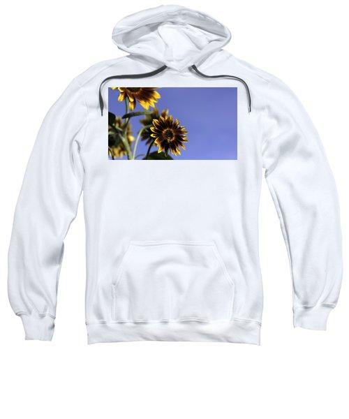 A Summer's Day Sweatshirt
