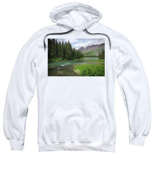 A Walk In The Forest Sweatshirt