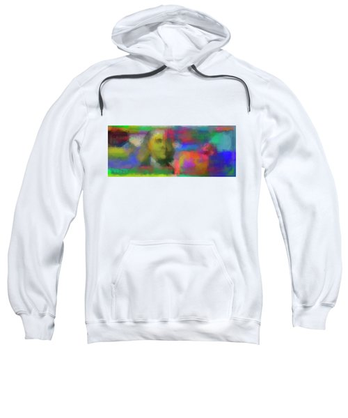 Abstract Colorized One Hundred Us Dollar Bill Abstract Colorized One Hundred Us Dollar Bill  Sweatshirt