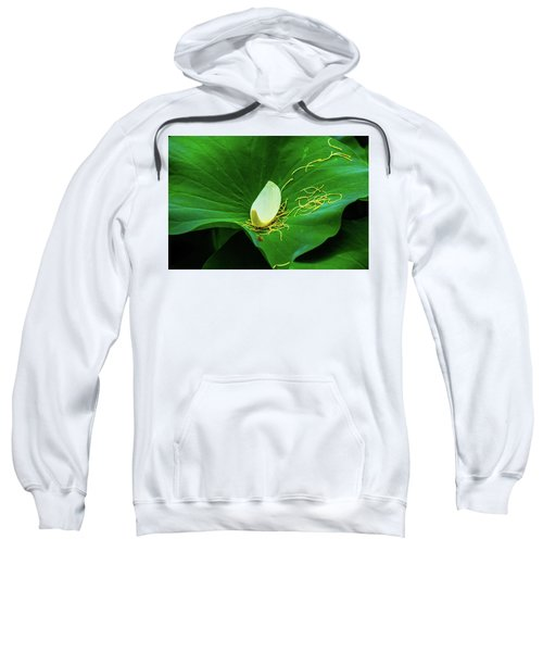 Abstract Leaves Of Green And Yellow Sweatshirt