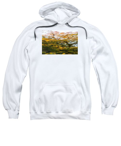 Abstract Of Maple Tree Sweatshirt