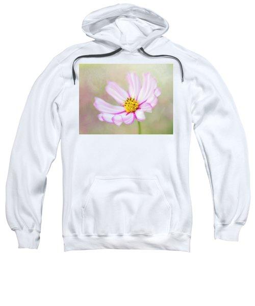 Abundance. Sweatshirt