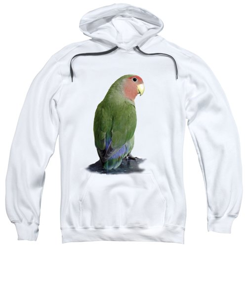 Adorable Pickle On A Transparent Background Sweatshirt by Terri Waters