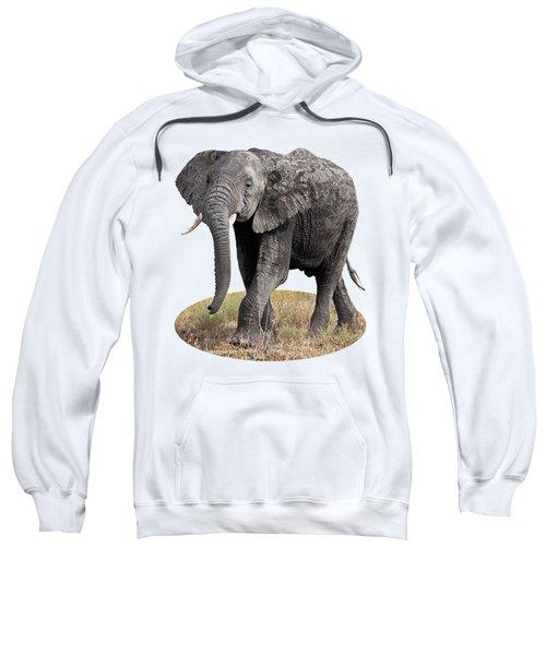 African Elephant Happy And Free Sweatshirt