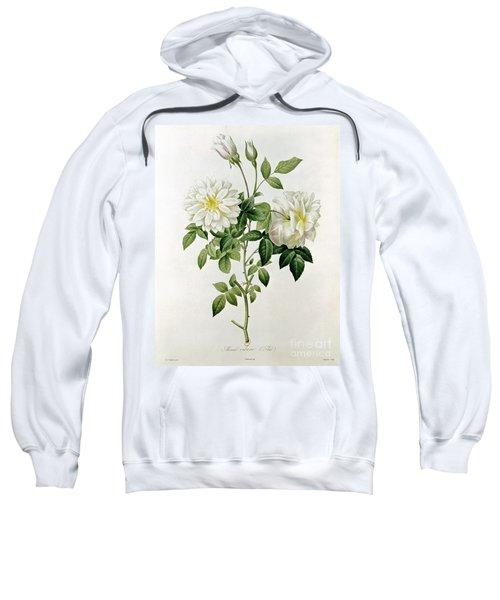 Aime Vibere Sweatshirt