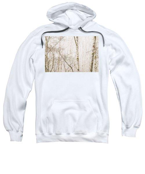 Alders In The Fog Sweatshirt