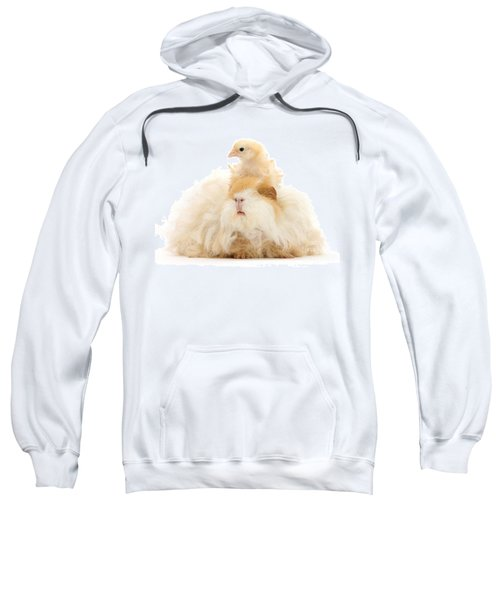 All Frizzed Up And Ready To Go Sweatshirt