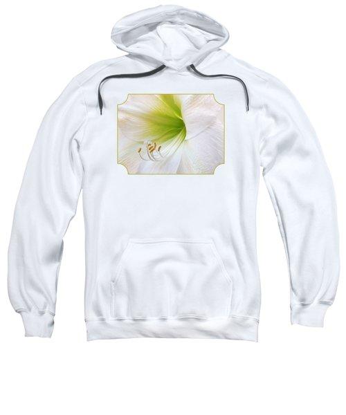 Alluring Amaryllis Square Sweatshirt