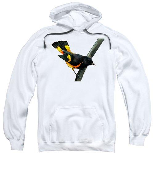 American Redstart Sweatshirt by Rory Viale