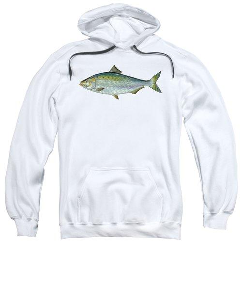 American Shad Sweatshirt