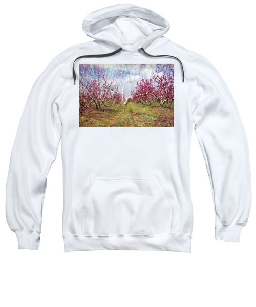 An Orchard In Blossom In The Golan Heights Sweatshirt