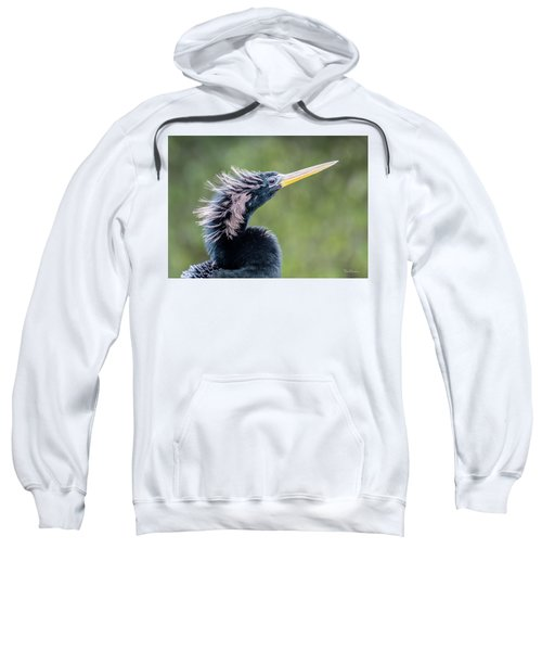 Anhinga - Like My Doo Sweatshirt