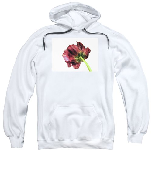 Another Point Of View Sweatshirt