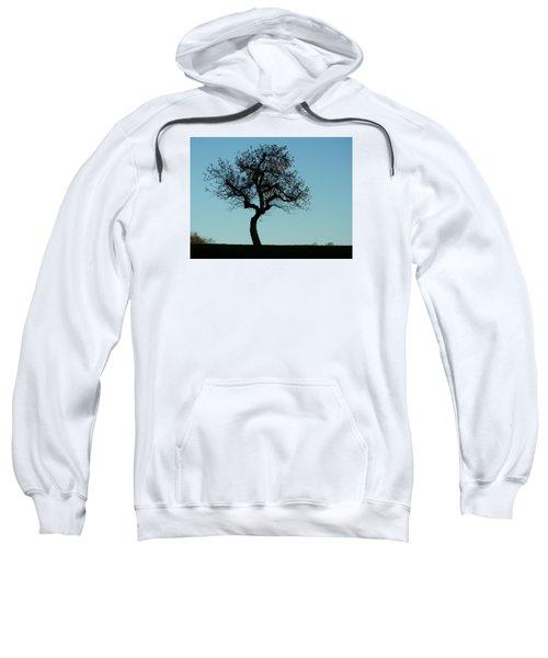 Apple Tree In November Sweatshirt