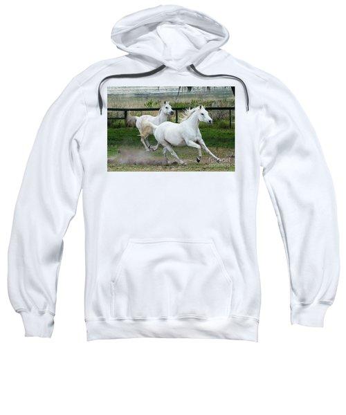 Arabian Horses Running Sweatshirt