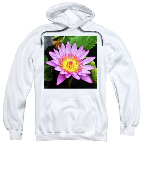 Water Lily Sweatshirt