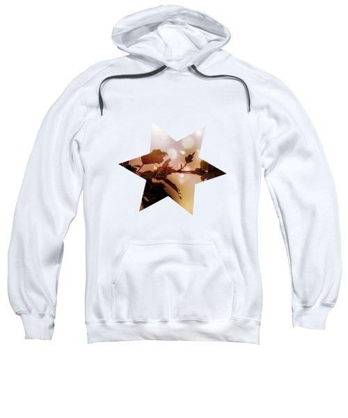 Copper Birch Sweatshirt
