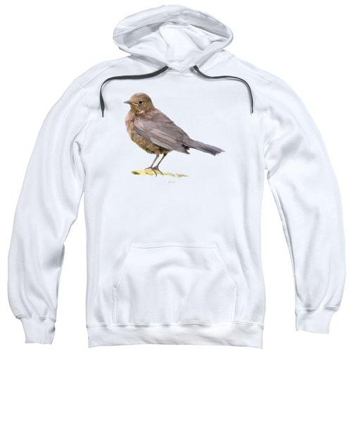 Young Blackbird  Sweatshirt by Bamalam  Photography