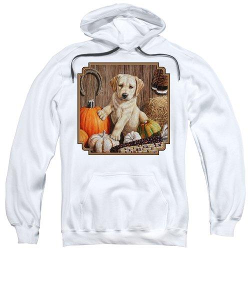 Pumpkin Puppy Sweatshirt