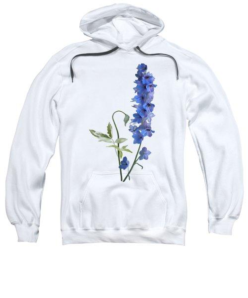 Consolida Sweatshirt