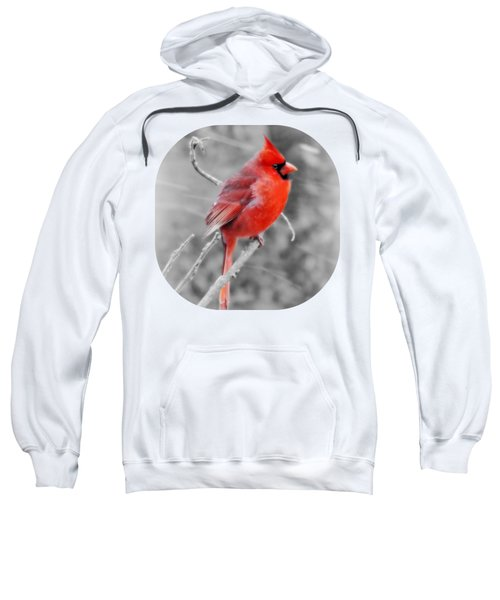 Frosted - Winter Sweatshirt