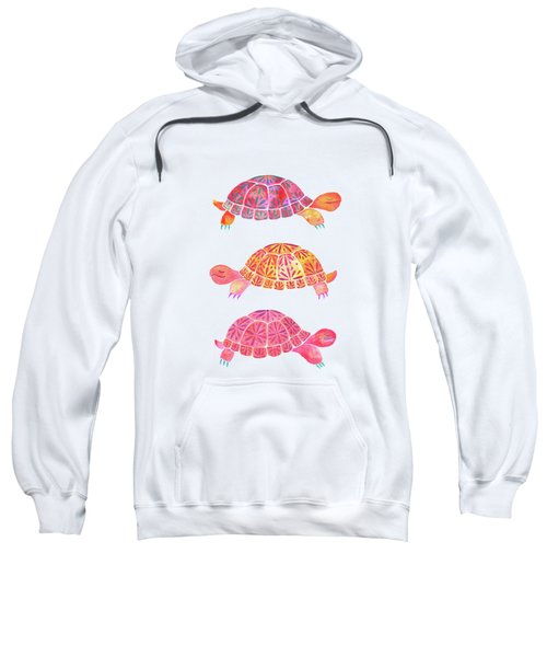 Turtles Sweatshirt by Laura Vitali