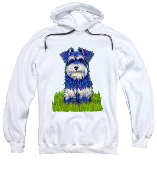 Colorful Miniature Schnauzer Dog Sweatshirt