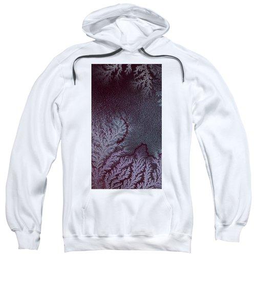 Ammonium Chloride Crystal Sweatshirt