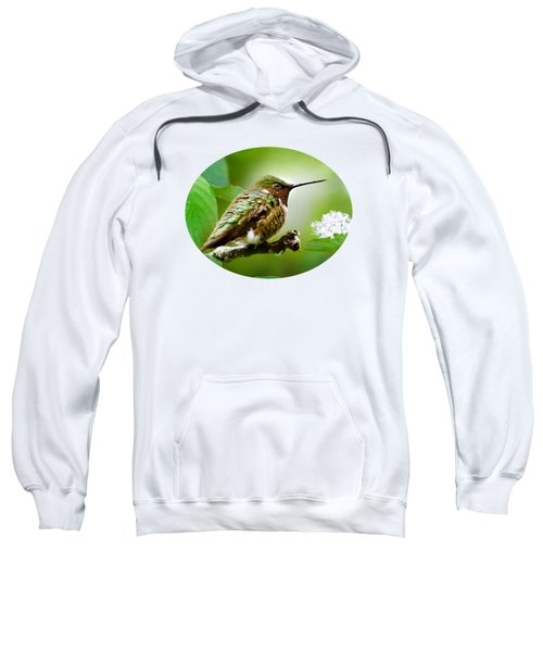 Male Ruby-throated Hummingbird At Rest Sweatshirt