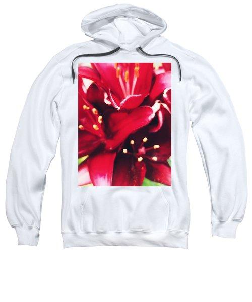 Asiatic Lilies Sweatshirt