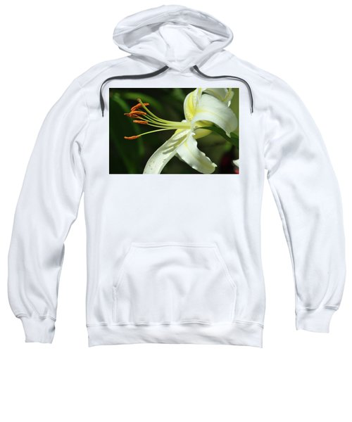 Asiatic Lily No 3 Sweatshirt