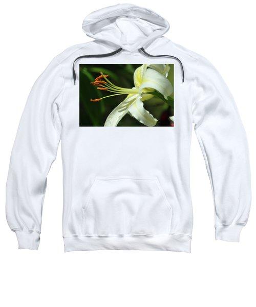 Asiatic Lily No 3 Sweatshirt
