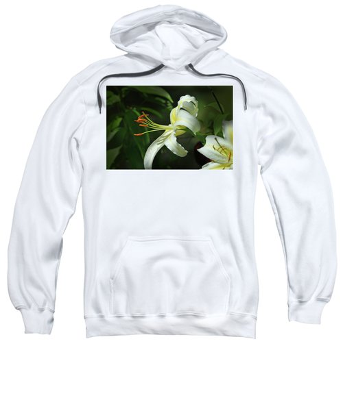 Asiatic Lily No 4 Sweatshirt